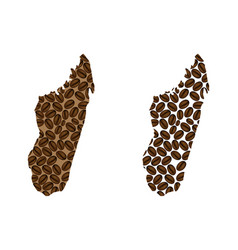 Madagascar - map of coffee bean vector