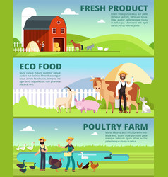 Organic farming and agribusiness banners with vector