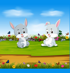 rabbits relax in the sunny day vector image