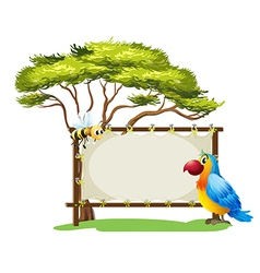 A parrot and a bee vector image