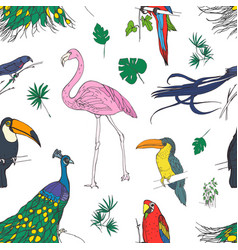 beautiful colored seamless pattern with tropical vector image vector image