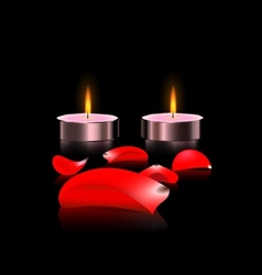 candles and petals vector image