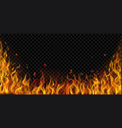 background fire flames vector image