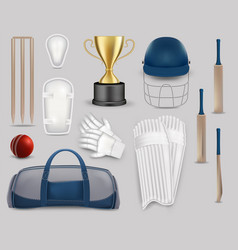 cricket game equipment set isolated vector image