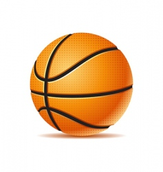 Vector basket ball vector