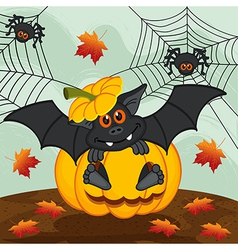 halloween pumpkin bat vector image vector image