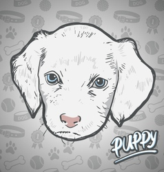 Painted head puppy vector image vector image