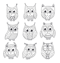 set of isolated funny owls black and white vector image