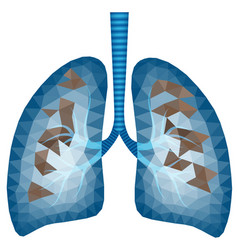 abstract polygonal image of sick lungs vector image
