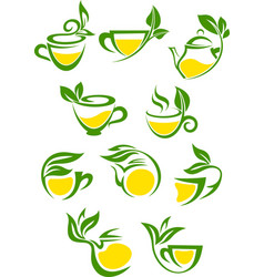 Green or herbal tea with lemon icon set vector