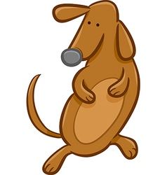 sausage dog cartoon vector image