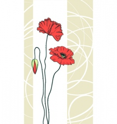 floral poppies background vector image vector image