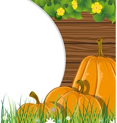 Pumpkins on the wooden background vector image vector image