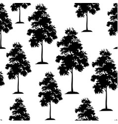acacia trees seamless vector image vector image