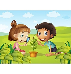 Boy and girl looking at ladybug on leaf vector