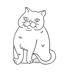 Exotic shorthair icon in outline style isolated on vector