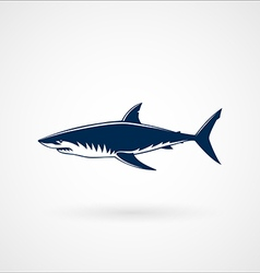 Great white shark sign vector