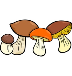 mushrooms food objects group vector image