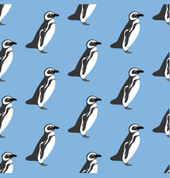 penguin seamless pattern vector image