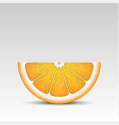 Realistic orange slice vector
