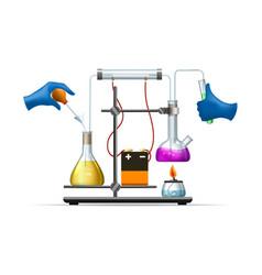 Scientific lab experiment vector
