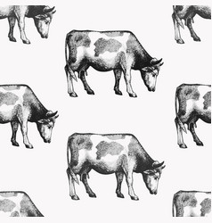 Seamless farm pattern graphical cow vector