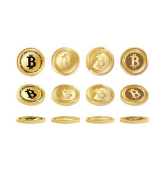 bitcoin coin set vector image