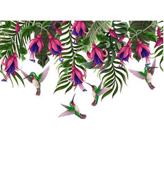 Border with hummingbirds and tropical flowers vector