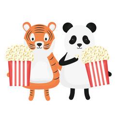 Cute tiger and bear panda with pop corn childish vector