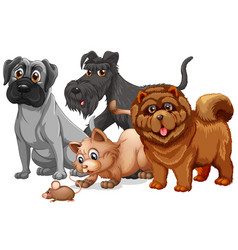 dog and cat in a group cartoon character vector image