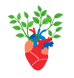 Human heart with leaves vector