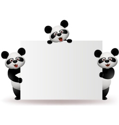 Three pandas with blank sign vector image