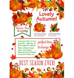 autumn season leaf fall harvest vegetable poster vector image