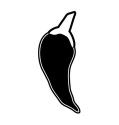 Chili peppers icon image vector