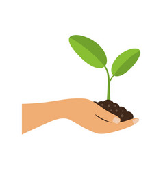 Hand holding plant seedling or sprout with growth vector