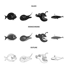 Isolated object of sea and animal sign collection vector