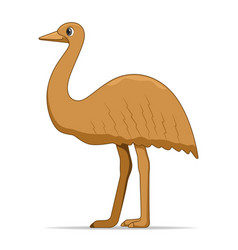 ostrich emu bird on a white background vector image