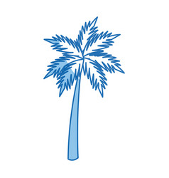palm tropical tree beach plant image vector image