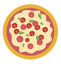 pizza on white background vector image