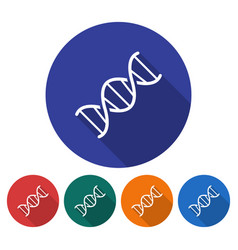 round icon of dna flat style with long shadow in vector image