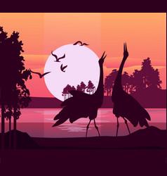 silhouette birds sunset vector image