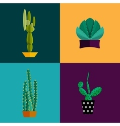 Tropical plants cactus set in flat style vector image