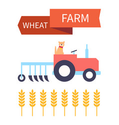 Wheat farm poster with tractor vector