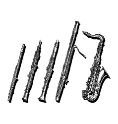 Woodwind musical instruments set vector image