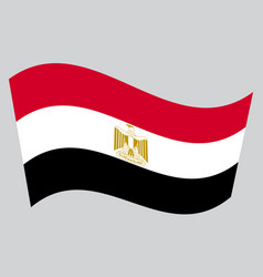 flag of egypt waving on gray background vector image