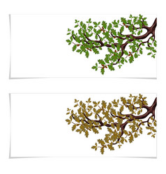 green and autumn a yellowed branch of a large oak vector image vector image