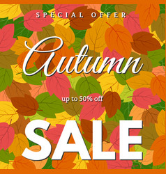 background with autumn leaves sale vector image