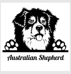 Dog head australian shepherd breed black and vector