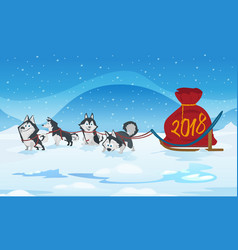 Dogs sled team and chrismas red bag with numbers vector