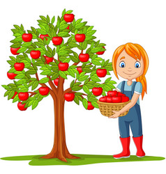 girl farmer gathering apples in basket vector image